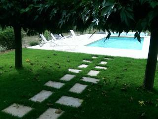 Des pas japonais disposés en chemin vers la piscine dans un jardin varois