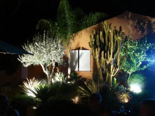 Eclairage du jardin