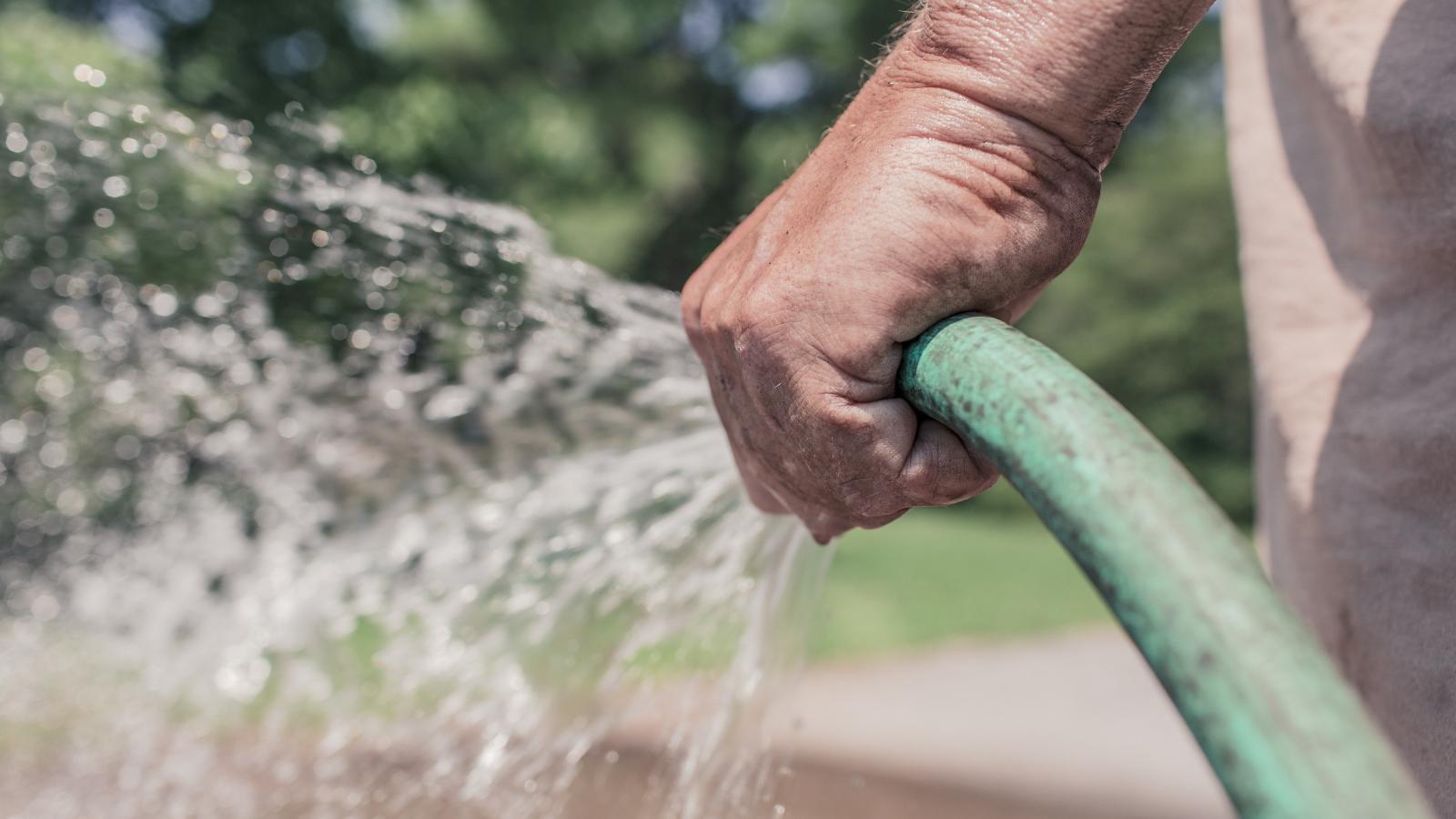 Arroser son jardin en été : conseils pour garder un jardin sublime