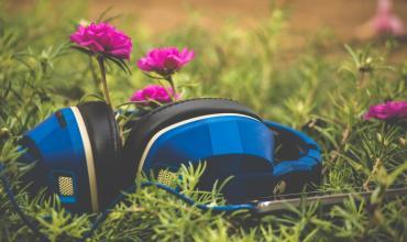 Sonorisation du jardin