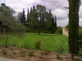 Gazon en plaques posé par les jardiniers Cade Paysage