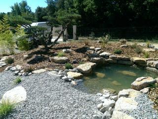 bassin d'agrément jardin brignoles st tropez