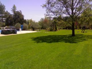 Un grand jardin de Saint-Maximin-la-Sainte-Baume gazonné
