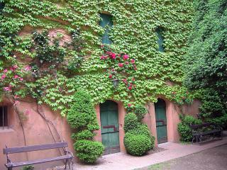 realisation mur vegetal brignoles