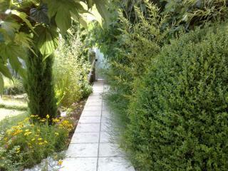 Création de jardin paysager à Brignoles autour de l'eau
