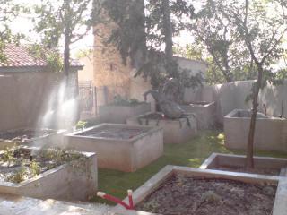 Pose d'un gazon Zoysia dans un jardin de Marseille