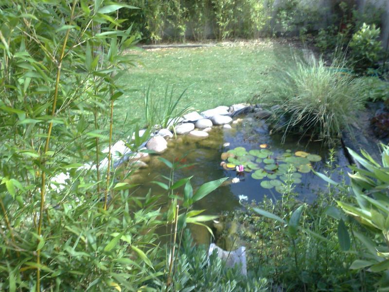 Cr ation de jardin brignoles brignoles var for Creation de jardin