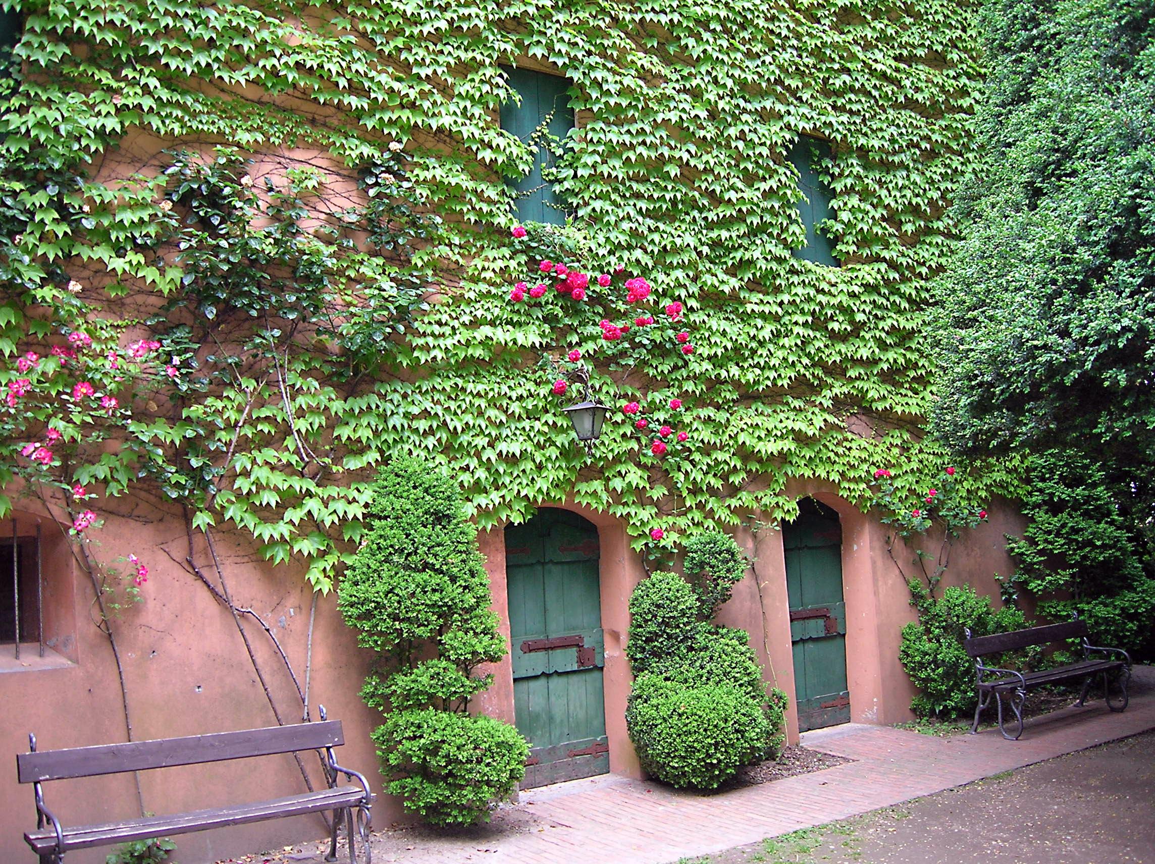 Toiture végétalisée - mur végétal - Création de jardins Brignoles (Var)