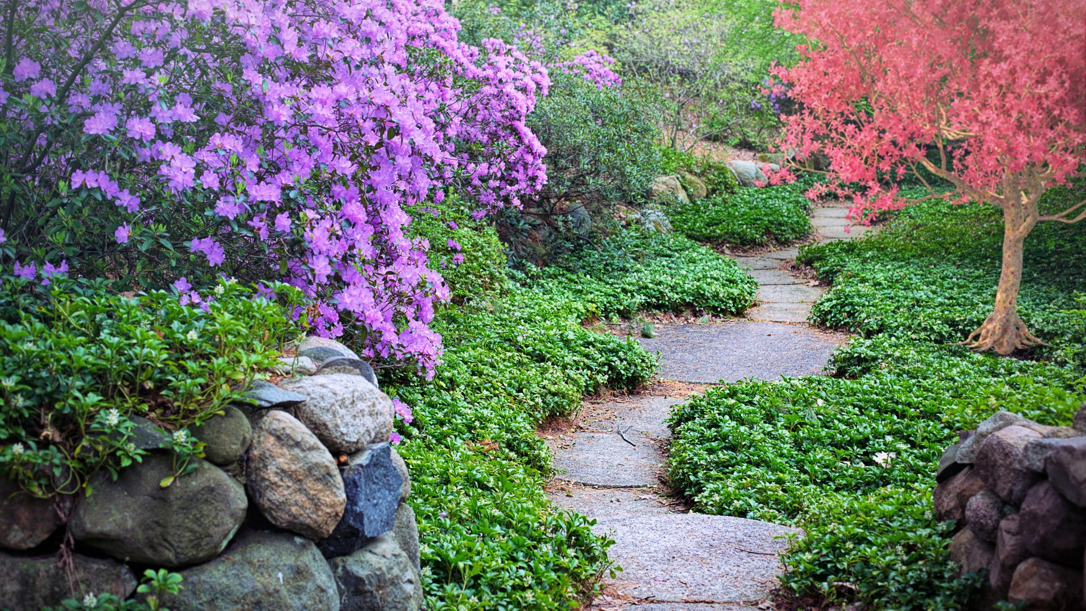 Création d'allées de jardin - Cade Paysage